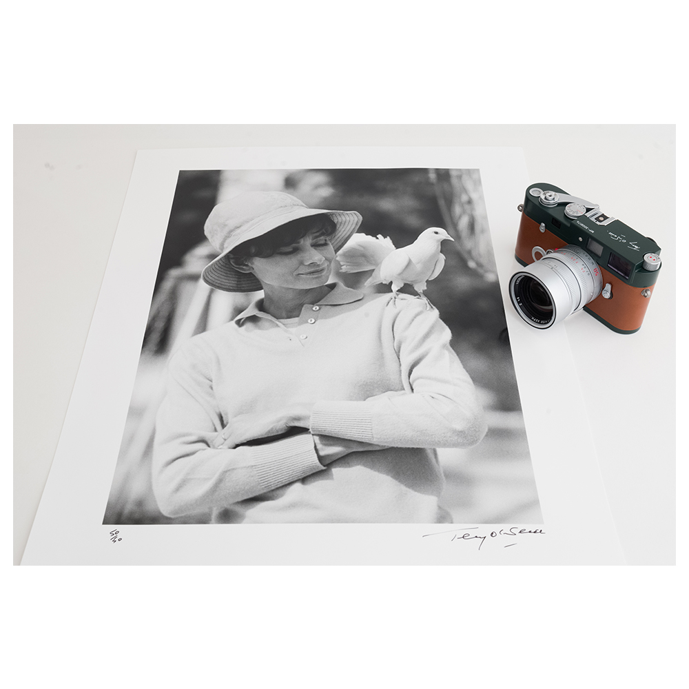 Terry O'Neill x Leica